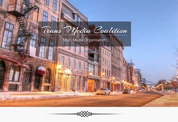 Transmediacoalition.com